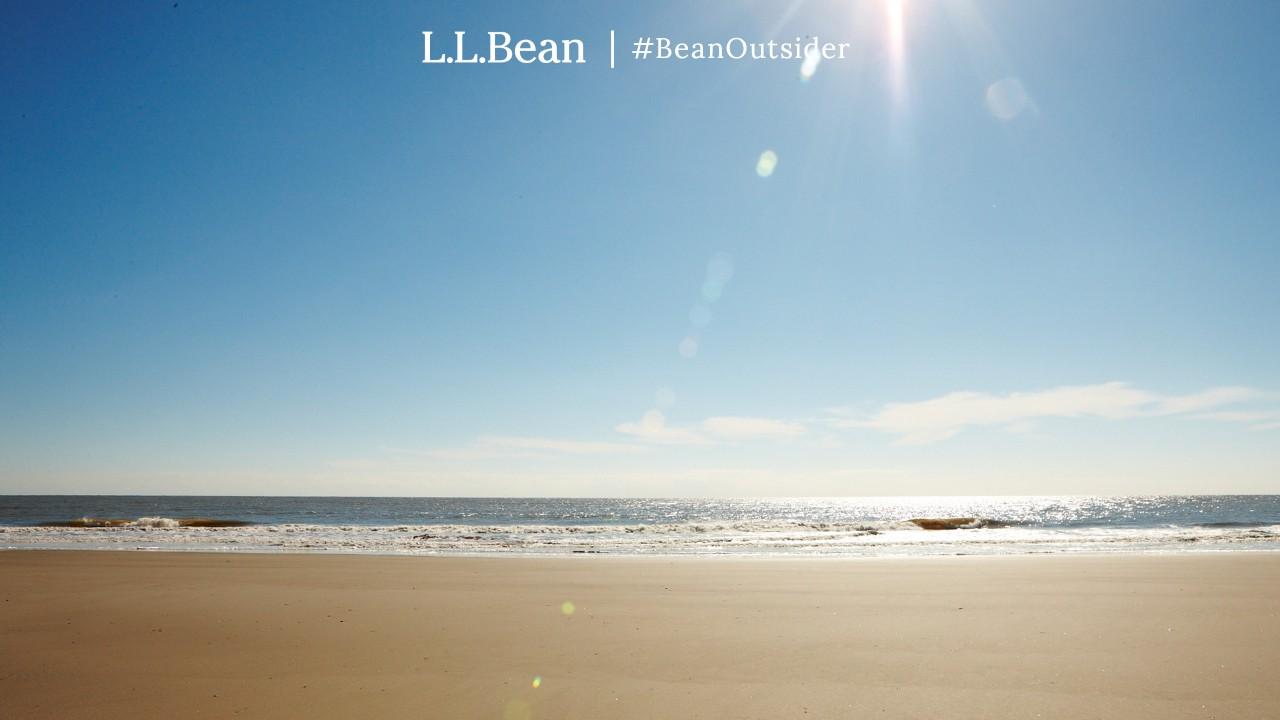 Sunny beach with rolling waves at Folly Beach, Folly Island, SC.